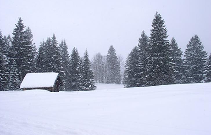 Intelligente Technologie gegen Schneelasten